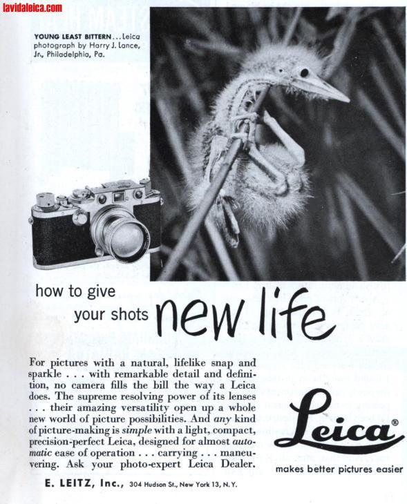 Vintage Leica Ad (English, 1952)