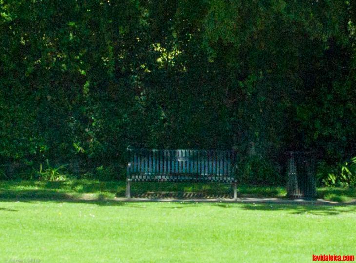 Public Park, Beverly Hills, 2015. M9, 35mm Summicron-M ASPH
